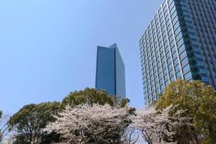 大阪ビジネスパークと桜の写真素材 [FYI03216820]
