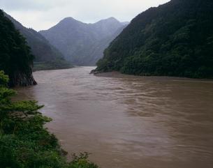 荒廃した森林 熊野川大雨で濁流の写真素材 [FYI03216969]