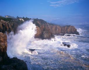 南紀白浜温三段壁の写真素材 [FYI03217021]