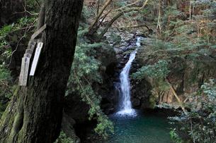 那智山48滝 うしたれの滝の写真素材 [FYI03217034]