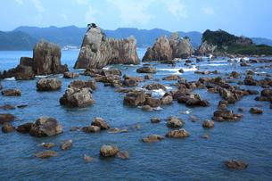 橋杭岩の写真素材 [FYI03217069]