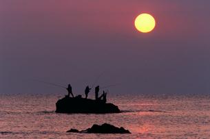 朝の磯釣り風景の写真素材 [FYI03217083]