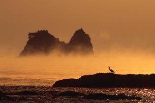 田原の海霧の写真素材 [FYI03217084]