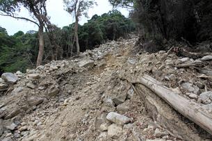 台風12号により土石流が起きた那智原始林の写真素材 [FYI03217176]