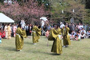 熊野本宮大社例大祭の大和舞の写真素材 [FYI03217242]
