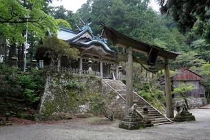 玉置神社の写真素材 [FYI03217331]