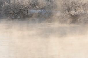 気嵐が立つ釧路川と霧氷の写真素材 [FYI03217879]