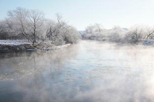 気嵐が立ち氷が流れる釧路川と霧氷の写真素材 [FYI03217882]