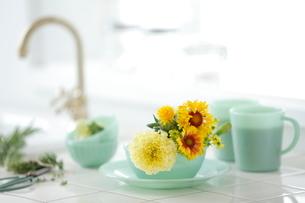 キッチンアレンジの写真素材 [FYI03219010]