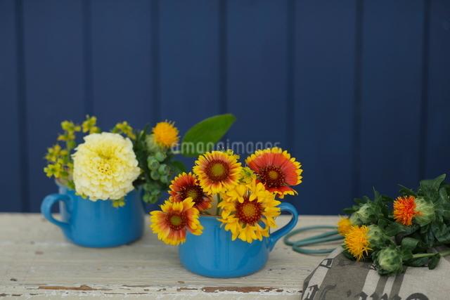 ブルーのコップに生けられた花の写真素材 [FYI03219016]