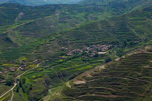 東チベット・アムド地方の段々畑の写真素材 [FYI03219537]