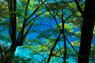 九寨溝の鏡海の写真素材 [FYI03219550]
