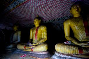 ダンブッラの黄金寺院の写真素材 [FYI03219553]
