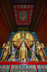 チベットの千手観音の写真素材 [FYI03219576]
