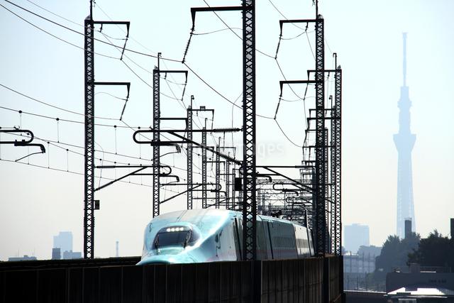 東北新幹線はやぶさと東京スカイツリーの写真素材 [FYI03219724]