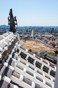 姫路城天守閣からの眺めの写真素材 [FYI03219820]
