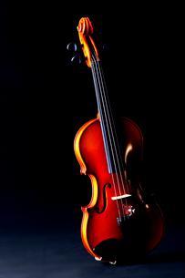 黒バックにバイオリンの写真素材 [FYI03219909]