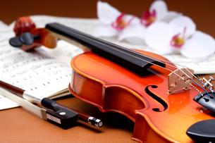 茶色のバックにバイオリン、楽譜、弦、造花の写真素材 [FYI03219915]