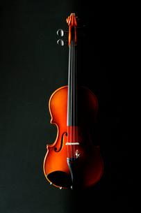 黒いバックにバイオリンの写真素材 [FYI03219926]