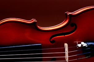 バイオリンのアップの写真素材 [FYI03219929]