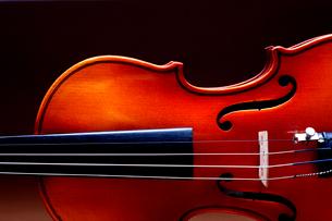 バイオリンのアップの写真素材 [FYI03219934]