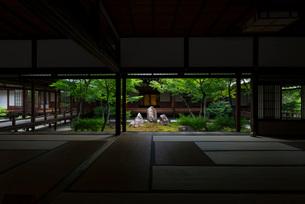 建仁寺の庭園・潮音庭を古書院から眺めるの写真素材 [FYI03220063]