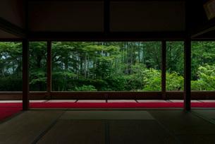 宝泉院の額縁庭園・盤桓園の写真素材 [FYI03220075]