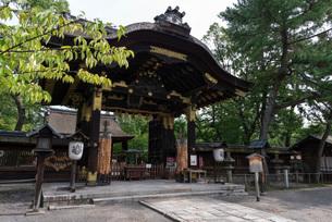 荘厳な佇まいを見せる豊国神社唐門の写真素材 [FYI03220334]