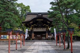 荘厳な佇まいを見せる豊国神社唐門の写真素材 [FYI03220337]
