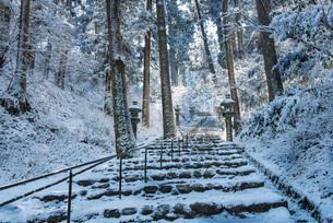 雪に包まれた木々も白く染まる比叡山延暦寺の西塔に続く参道の写真素材 [FYI03220418]