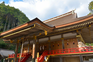 日吉大社東本宮本殿の写真素材 [FYI03220437]