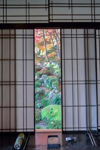 教林坊書院からの眺め 庭園と紅葉の写真素材 [FYI03220442]