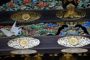 二条城 二の丸御殿唐門の彫刻の写真素材 [FYI03220448]