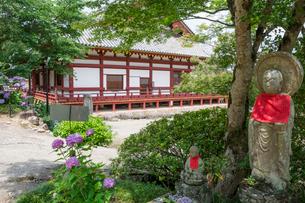 矢田寺本堂とお地蔵さんとアジサイの写真素材 [FYI03220501]