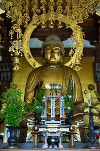 大池寺本尊 釈迦如来坐像の写真素材 [FYI03220502]