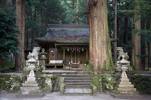 室生龍穴神社,拝殿の写真素材 [FYI03220507]