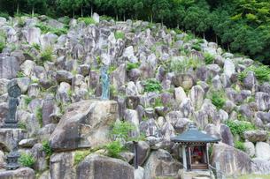 観音正寺石積み庭園と観音立像の写真素材 [FYI03220541]