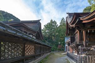 三尾神社本殿(写真左)と境内の写真素材 [FYI03220552]