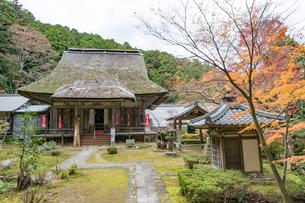 瓦屋寺の本堂と紅葉の写真素材 [FYI03220554]