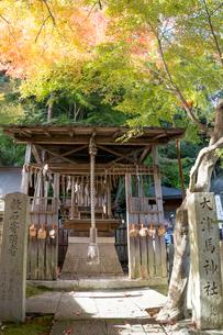 馬神神社,大津馬神社の写真素材 [FYI03220557]