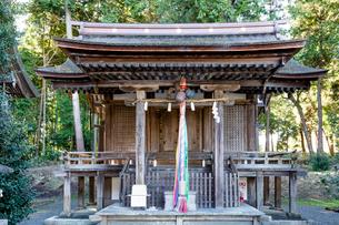 天皇神社本殿の写真素材 [FYI03220560]