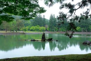 毛越寺 浄土庭園 大泉が池の写真素材 [FYI03220639]