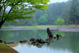 毛越寺 浄土庭園 大泉が池の写真素材 [FYI03220642]