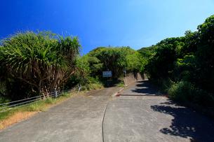 自然環境保護区入り口 母島の写真素材 [FYI03220856]