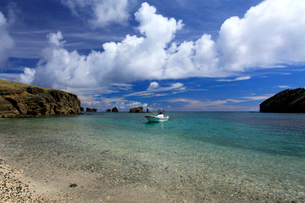 聟島 針の岩 海の写真素材 [FYI03221402]