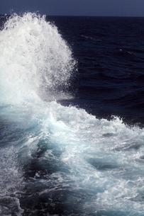 八丈島沖の写真素材 [FYI03221508]