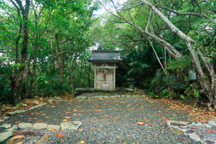 月ケ岡神社 母島の写真素材 [FYI03221829]
