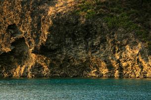 枕状溶岩 小港海岸 父島の写真素材 [FYI03221988]