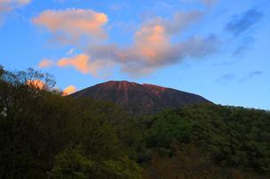 ダケカンバと夕暮れの男体山の写真素材 [FYI03222611]