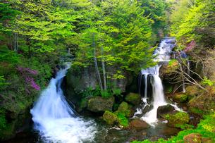 奥日光の新緑と竜頭ノ滝の写真素材 [FYI03222639]